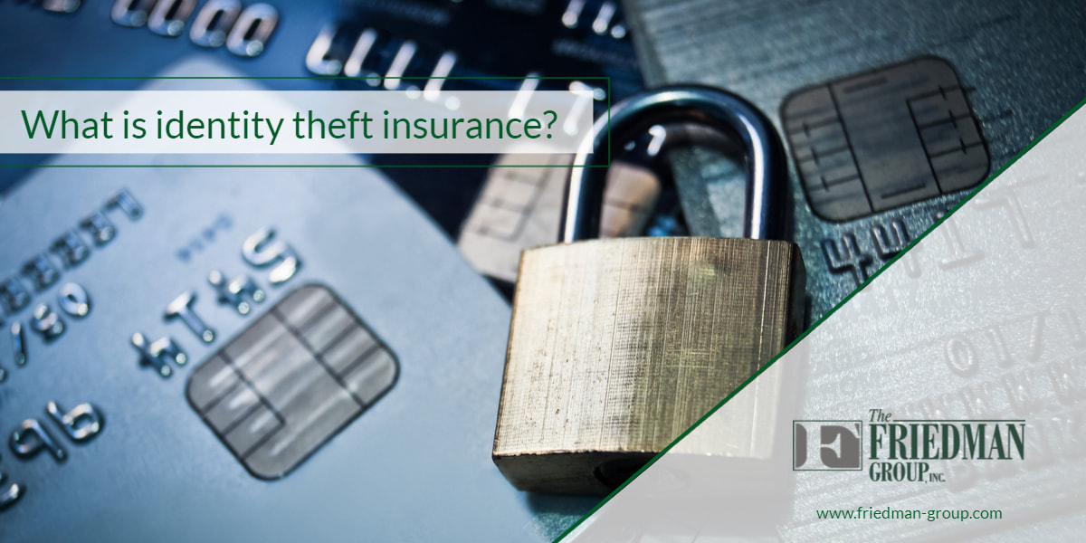 Identity theft insurance | Friedman Group